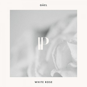 gael-white-rose.jpg